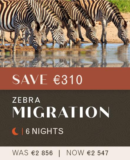 002 Zebra Migration_Landing Page-02
